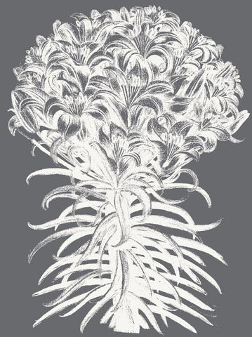 Botanical Series - Lilies (Gray & Ivory)