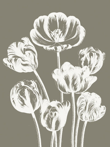 Tulips (Burlap & Ivory) -  Botanical Series - McGaw Graphics