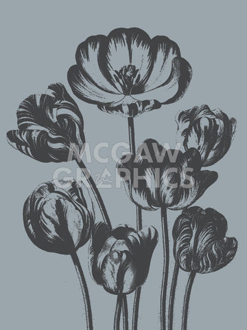 Tulips (Slate & Ink) -  Botanical Series - McGaw Graphics