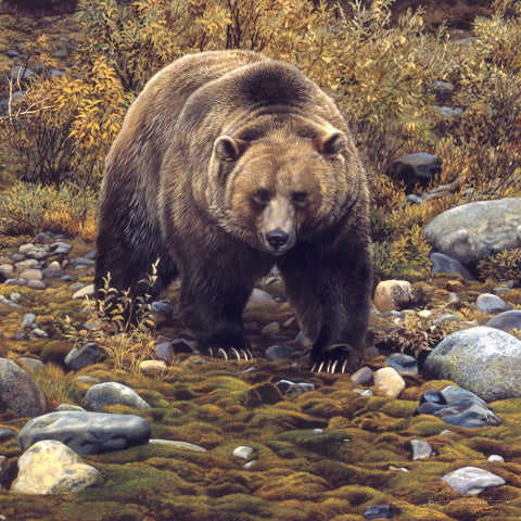 Carl Brenders - Trailblazer - Grizzly Bear (detail)