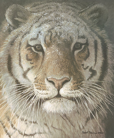 Robert Bateman - Tiger Portrait