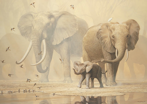 Ian Coleman - African Elephants and Namaqua Doves