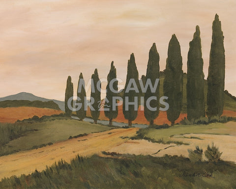 Shady Tuscan Road -  Jean Clark - McGaw Graphics