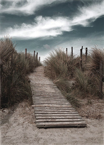 The Pathway -  Gill Copeland - McGaw Graphics