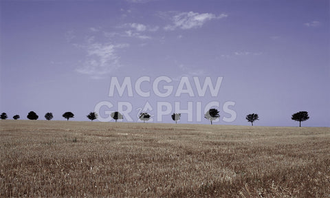 Season's Yield -  Gill Copeland - McGaw Graphics