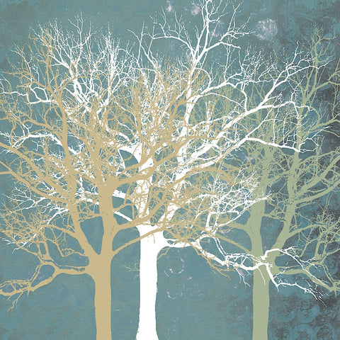 Tranquil Trees -  Erin Clark - McGaw Graphics