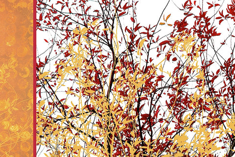 Painted Branches -  Erin Clark - McGaw Graphics