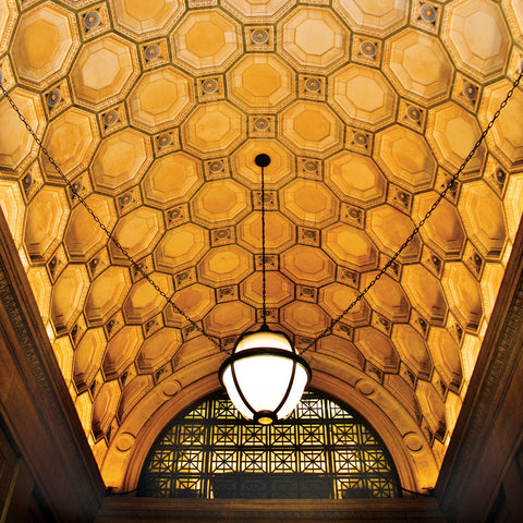 Ceiling Detail (color) -  Erin Clark - McGaw Graphics