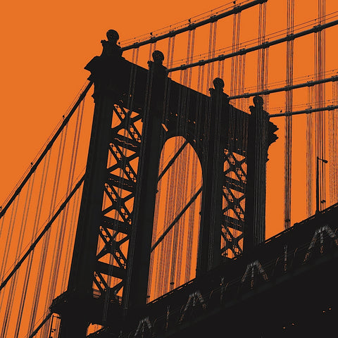 Orange Manhattan -  Erin Clark - McGaw Graphics