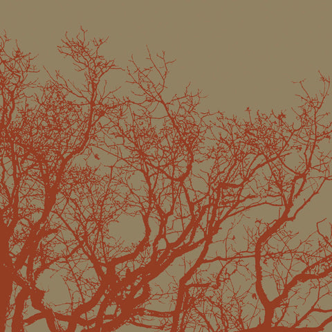 Cinnamon Tree II -  Erin Clark - McGaw Graphics
