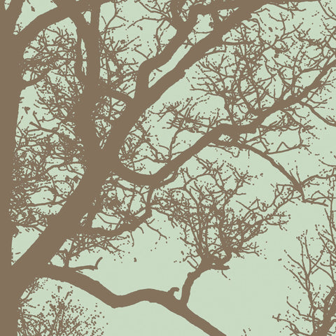 Winter Tree IV -  Erin Clark - McGaw Graphics