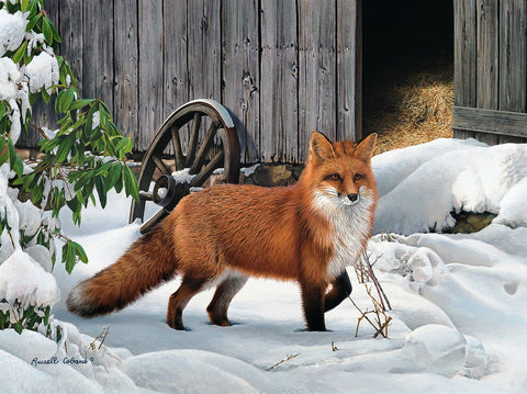 Fox and Barn -  Russell Cobane - McGaw Graphics