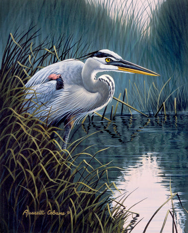 By the Marsh - Blue Heron -  Russell Cobane - McGaw Graphics