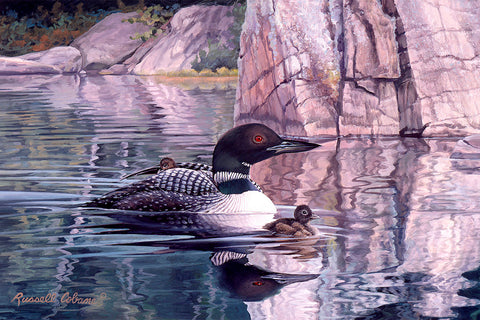 Loon with Baby (detail) -  Russell Cobane - McGaw Graphics