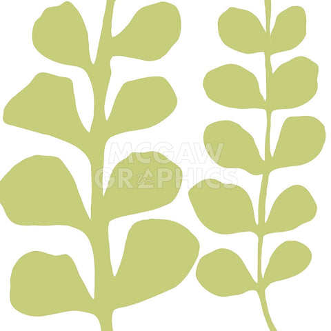 Green Fern on White -  Denise Duplock - McGaw Graphics