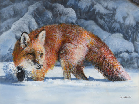 Fox at the Pines -  Kevin Daniel - McGaw Graphics