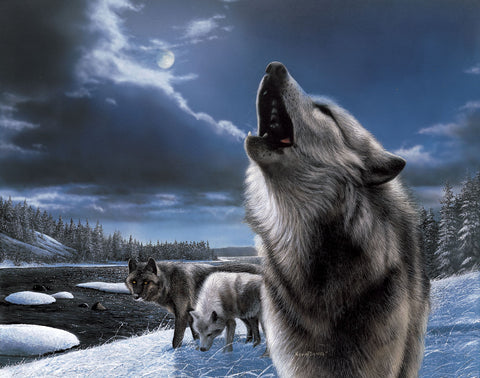 Howling Wolf -  Kevin Daniel - McGaw Graphics