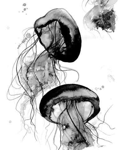 Jessica Durrant - Black and White Jellyfish