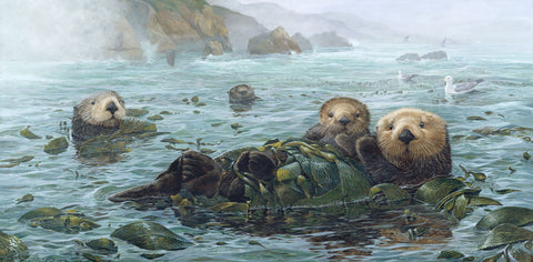 Carmel Coast Otters -  John Dawson - McGaw Graphics