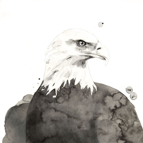Eagle -  Philippe Debongnie - McGaw Graphics