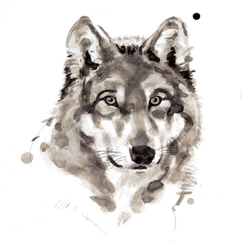 Wolf -  Philippe Debongnie - McGaw Graphics