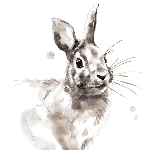 Rabbit -  Philippe Debongnie - McGaw Graphics