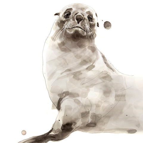 Seal -  Philippe Debongnie - McGaw Graphics