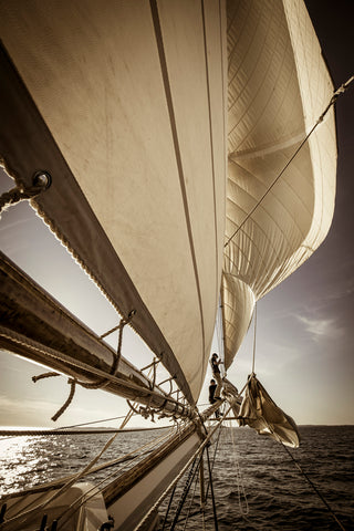 Furling Mary Day's Headsails, Penobscot Bay, Maine -  Jim Dugan - McGaw Graphics