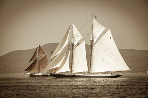The Great Schooner Race: Columbia and Angelique, Penobscot Bay, Maine -  Jim Dugan - McGaw Graphics