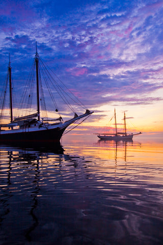 Schooners Victory Chimes and American Eagle at Sunrise, Rockland, Maine -  Jim Dugan - McGaw Graphics
