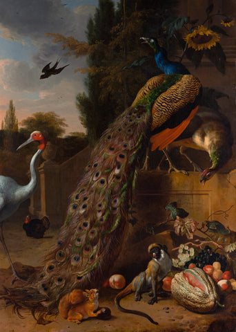 Peacocks, 1683 -  Melchior d'Hondecoeter - McGaw Graphics