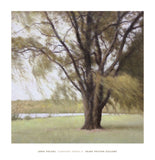 Lakeside Trees II -  John Folchi - McGaw Graphics