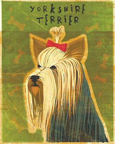 Yorkshire Terrier -  John W. Golden - McGaw Graphics