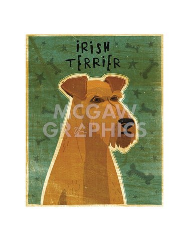 Irish Terrier -  John W. Golden - McGaw Graphics
