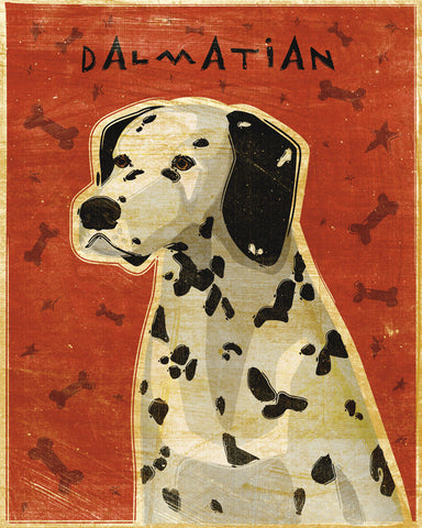 Dalmation -  John W. Golden - McGaw Graphics