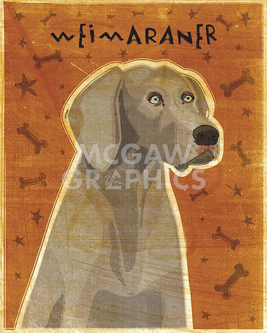 Weimaraner -  John W. Golden - McGaw Graphics