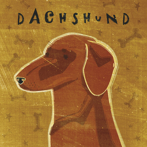 Dachshund (red) (square) -  John W. Golden - McGaw Graphics