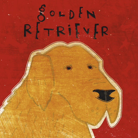 Golden Retriever (square) -  John W. Golden - McGaw Graphics