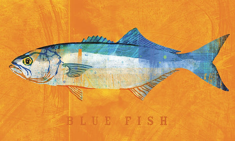 John W. Golden - Bluefish