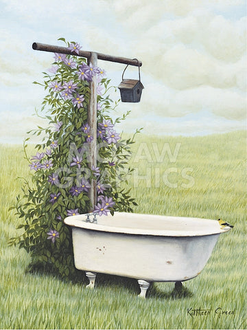 Bird Bath -  Kathleen Green - McGaw Graphics