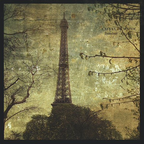 Eiffel Tower -  John W. Golden - McGaw Graphics
