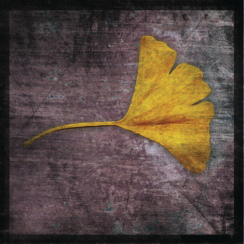 John W. Golden - Gingko 4