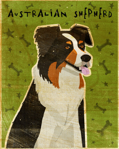 Australian Shepherd -  John W. Golden - McGaw Graphics