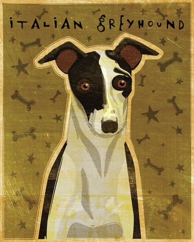 John W. Golden - Italian Greyhound (Black & White)