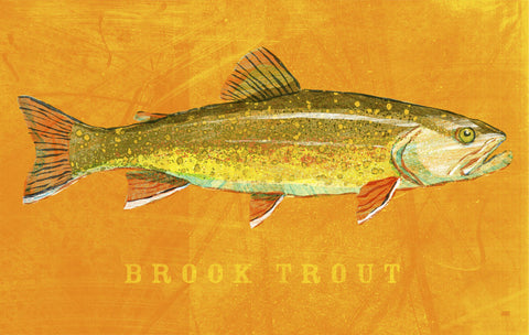 Brook Trout -  John W. Golden - McGaw Graphics