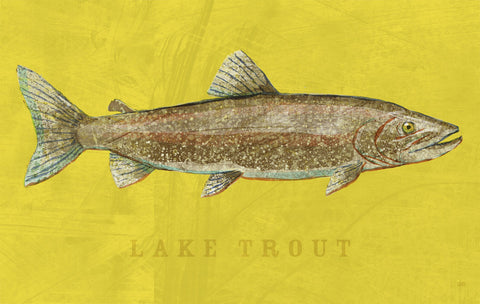John W. Golden - Lake Trout