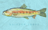 Rainbow Trout -  John W. Golden - McGaw Graphics