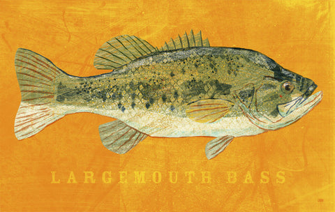 Largemouth Bass -  John W. Golden - McGaw Graphics