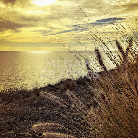 Oceanscape PCH -  Gizara - McGaw Graphics