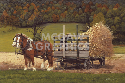 Kathleen Green - Amish Harvest